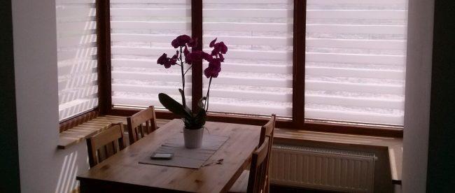 wybierz rolety w salonie Krakżal Kraków i ciesz się prywatnością